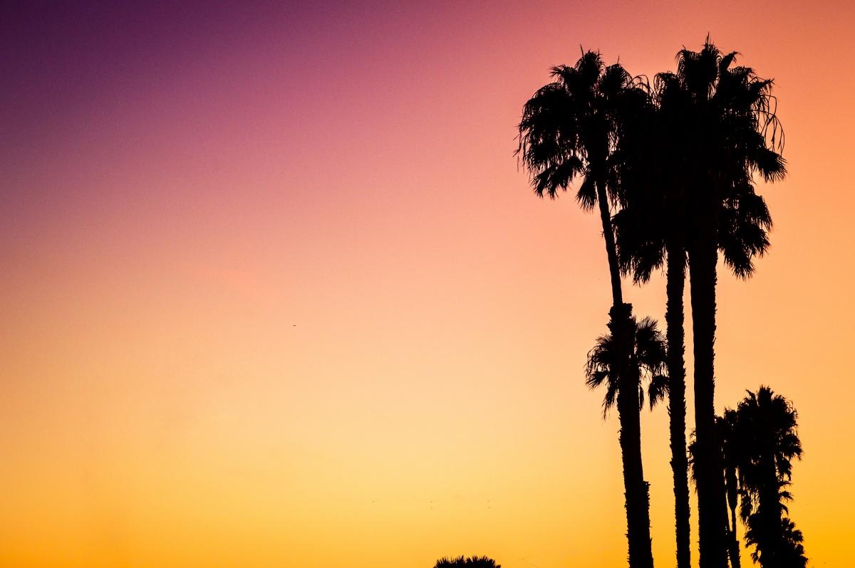 Viaggio nel nord della California