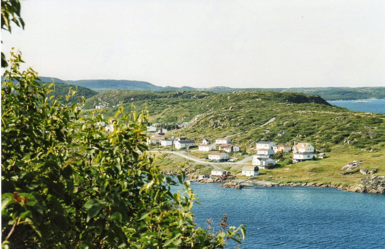 Viaggio a Terranova