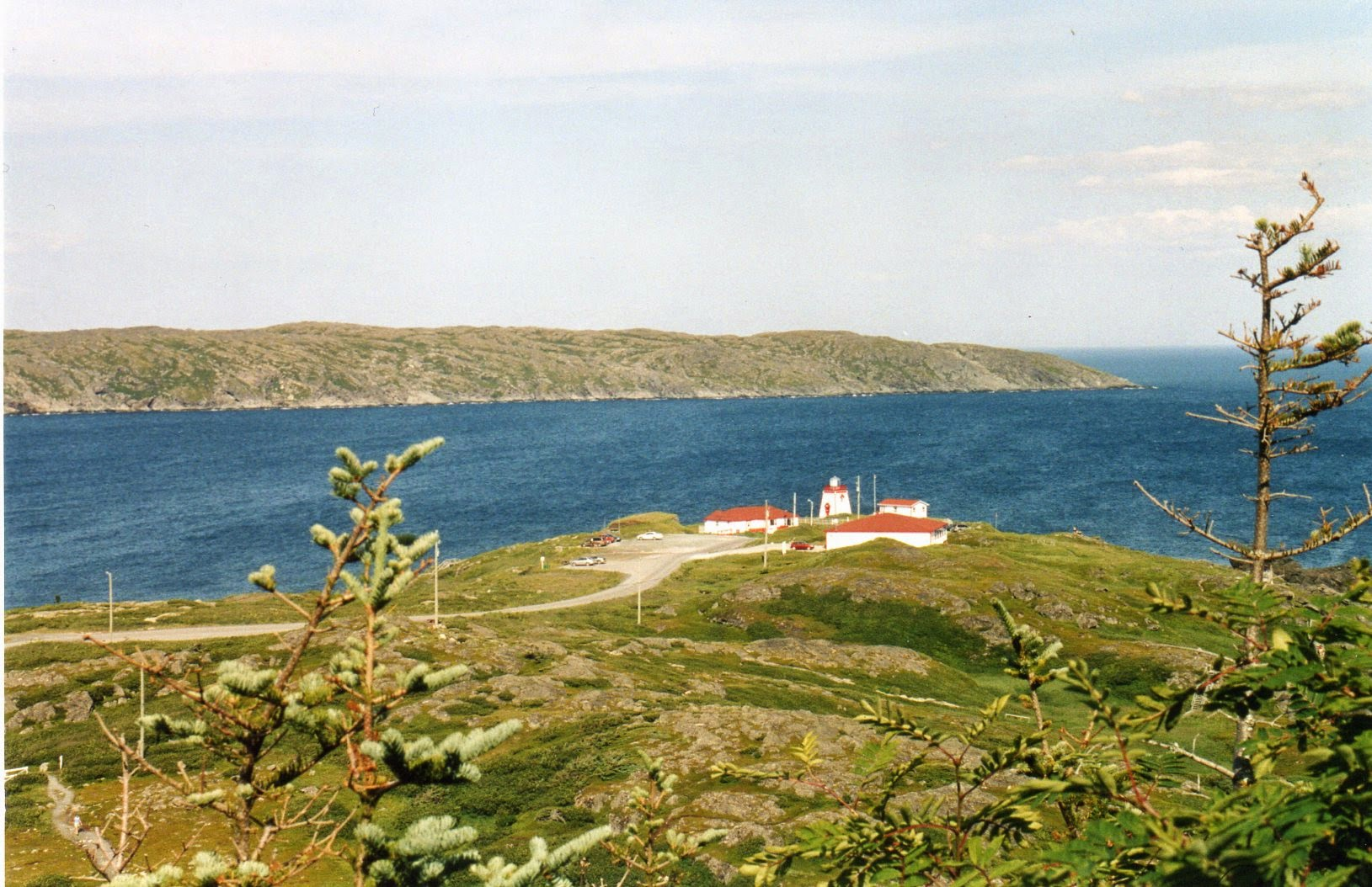 Terranova Canada