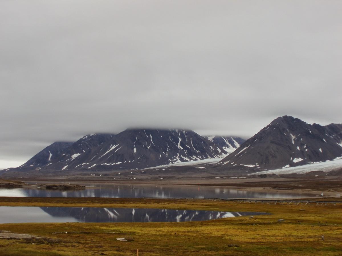 Natura alle Svalbard