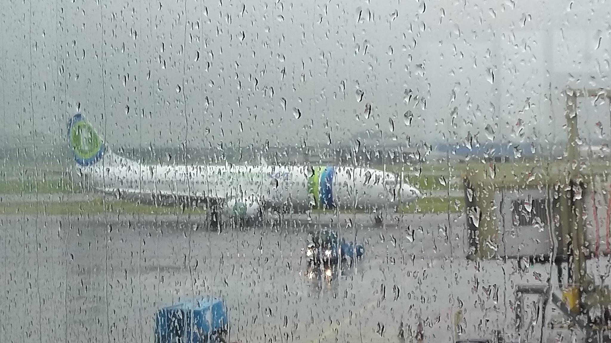 Volare in Olanda con Transavia