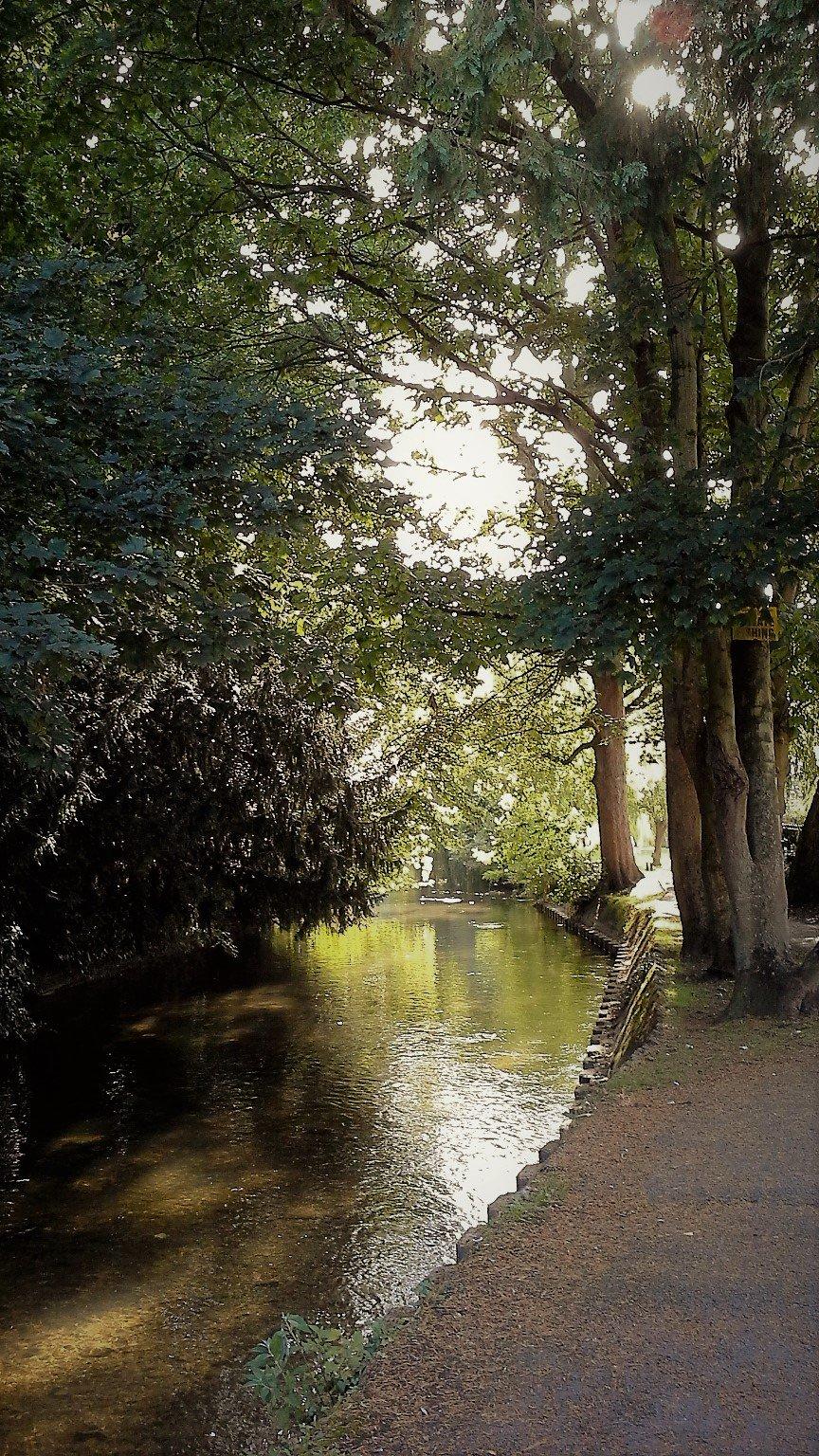 bosco e fiume avon