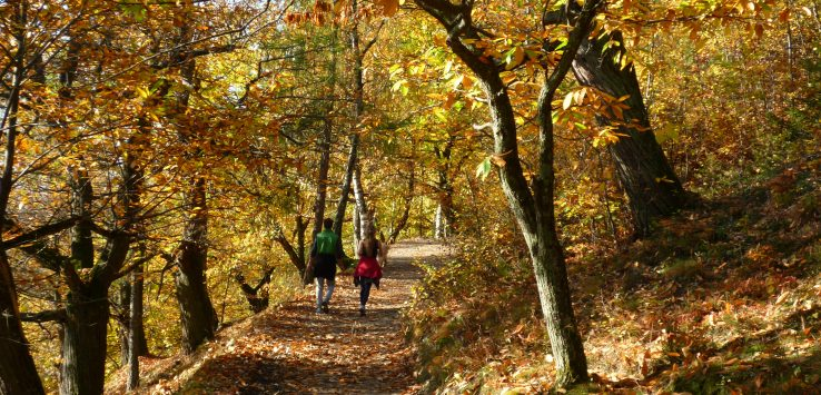La montagna in autunno