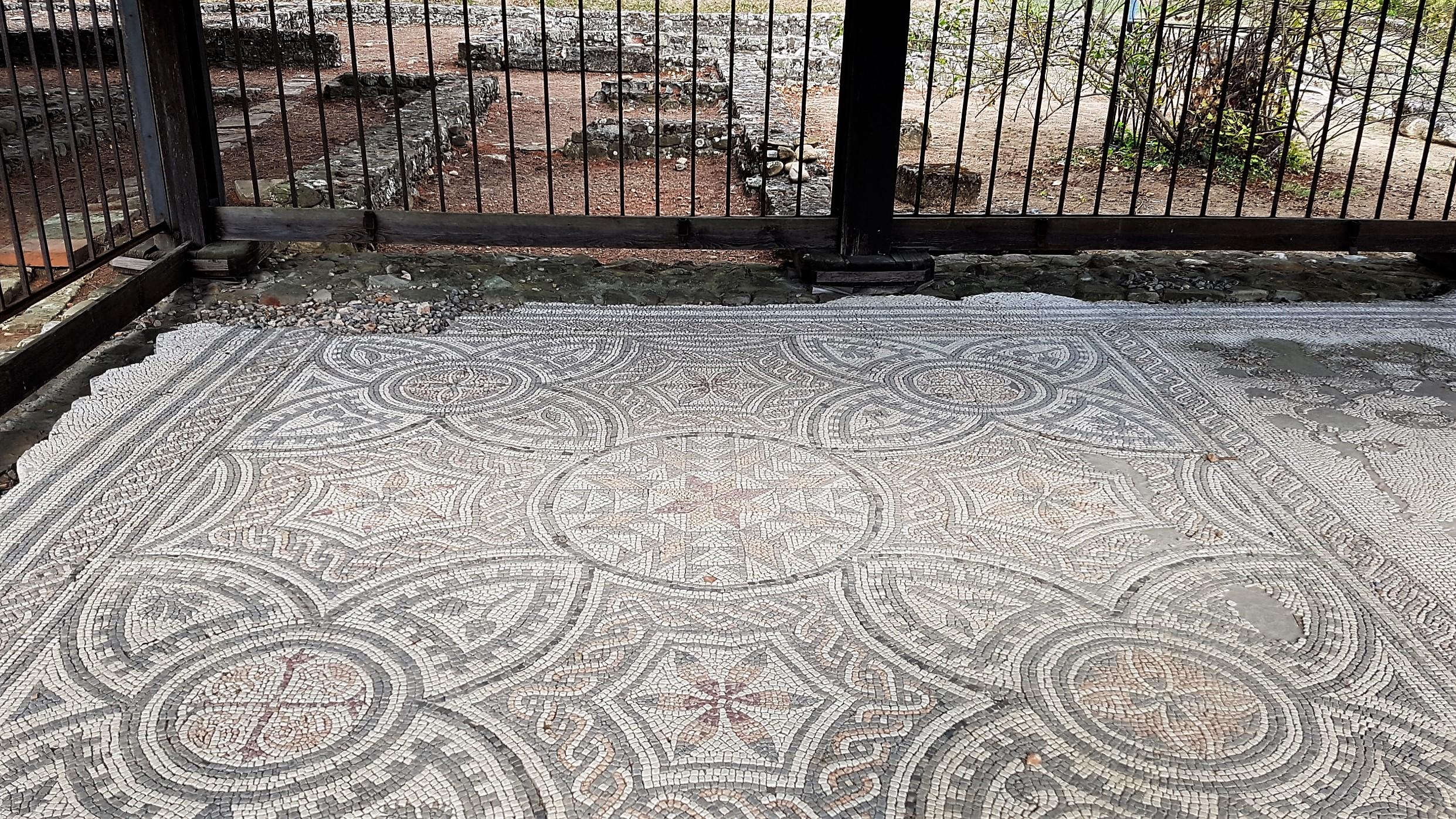 Mosaico Casa del Chirurgo Libarna