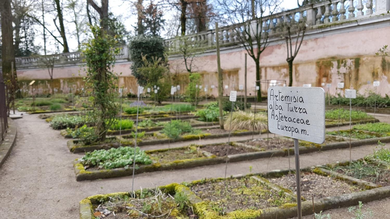 Orto botanico di padova hotel alla fiera