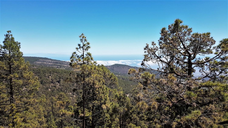 Parque Nacional Corona Forestal