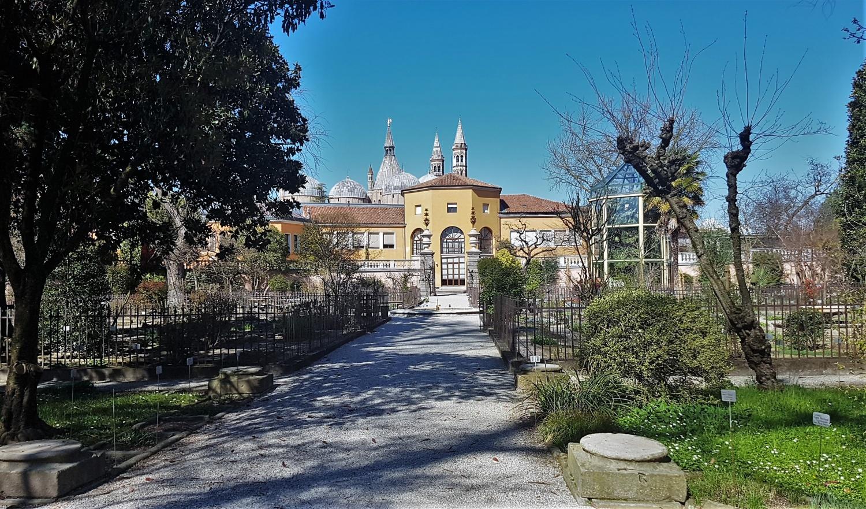 Visitare Orto botanico Padova