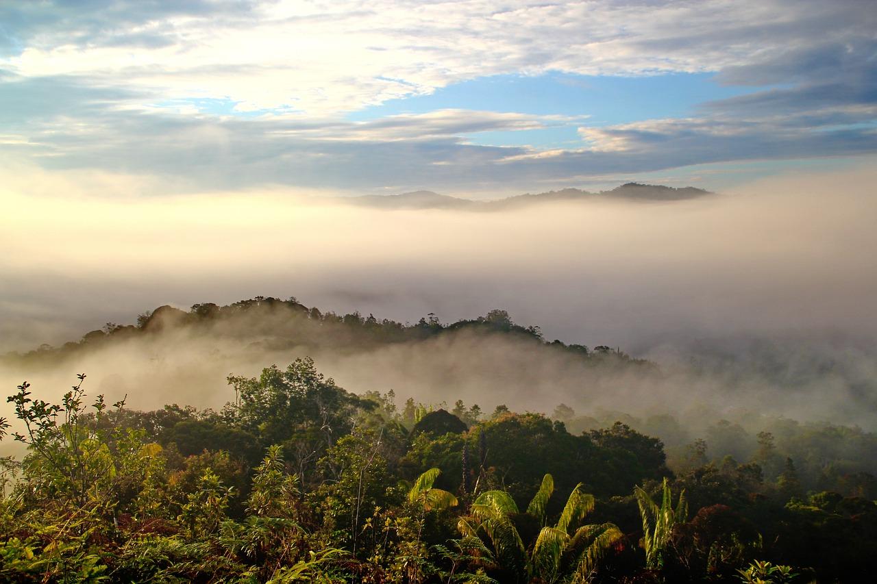 Viaggio nel Borneo