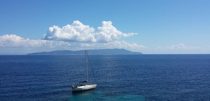 Diving Isola del Giglio
