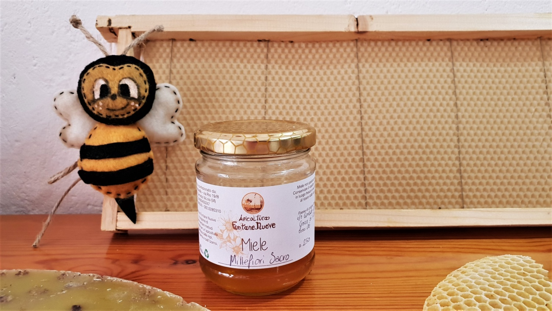 apicoltura fontane nuove