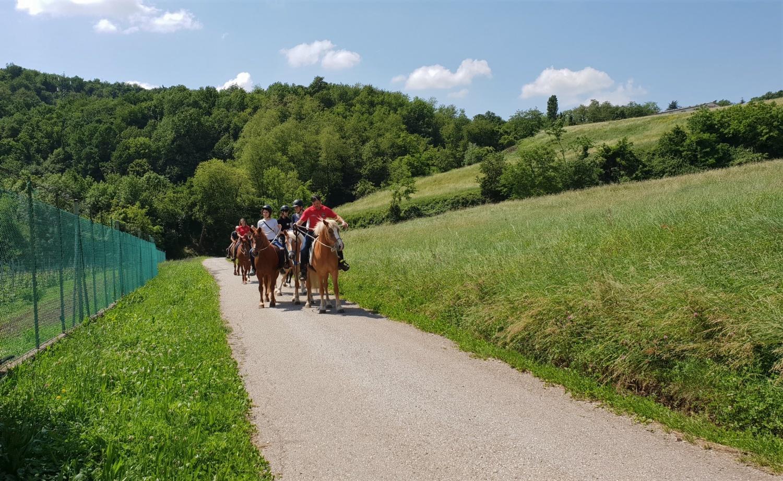 passeggiata a cavallo anello piccole dolomiti