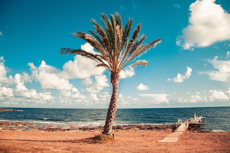 Viaggio a Cipro in inverno