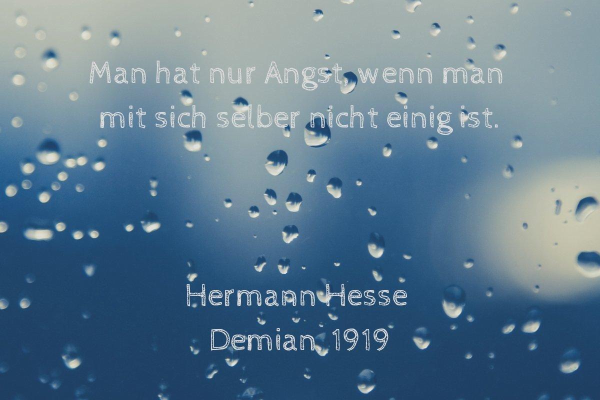 Hermann Hesse per me