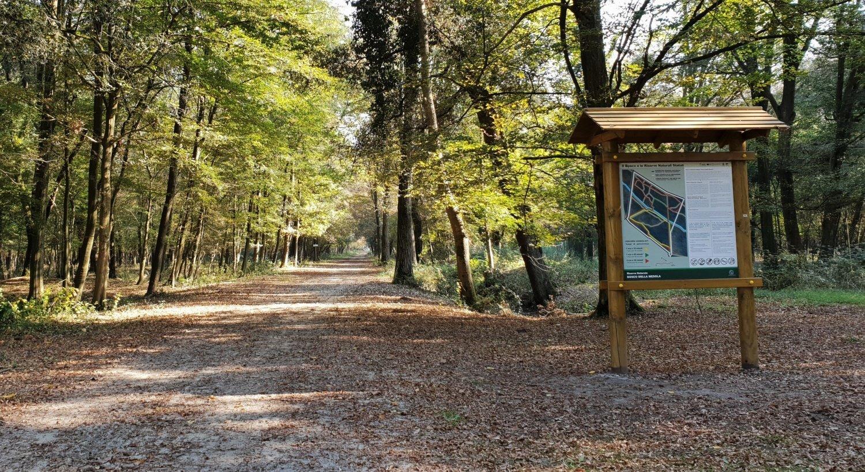 cartelli bosco della mesola