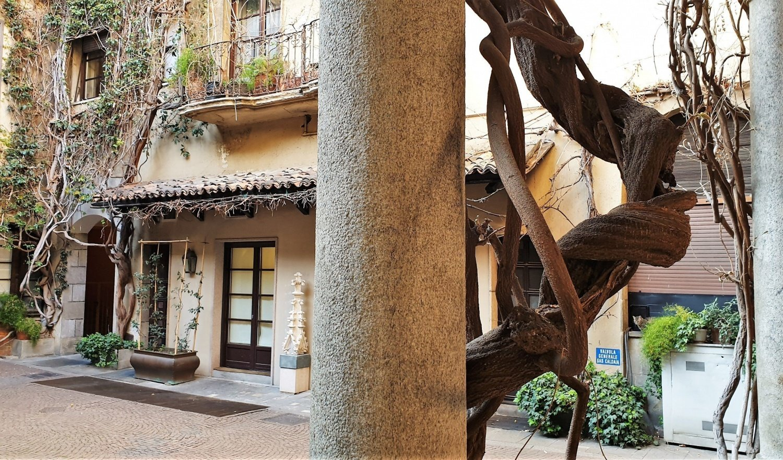 Dove si trova la Vigna di Leonardo a Milano