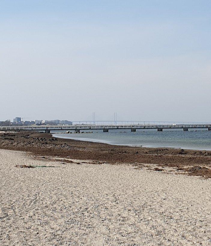 Il ponte di Oresund