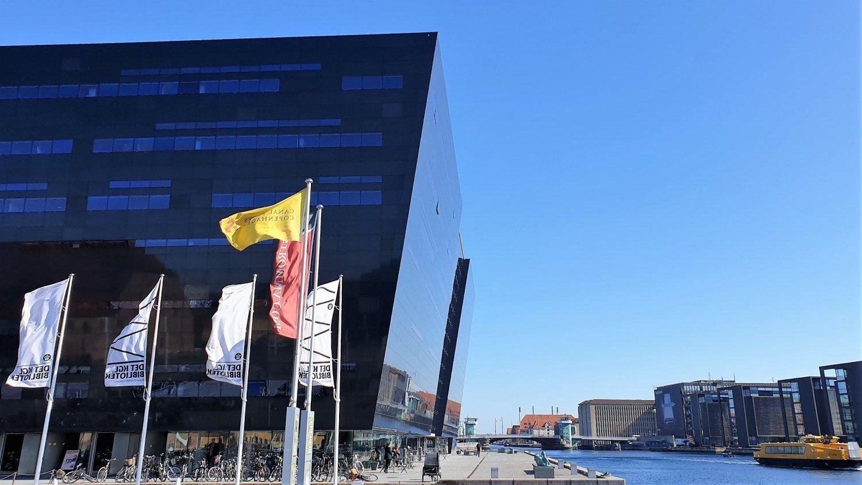 Visitare Black Diamond Copenhagen