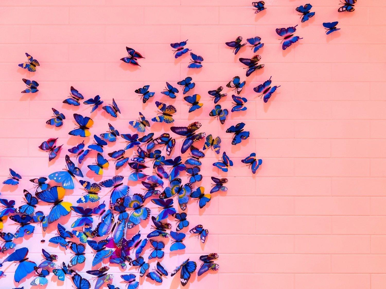 Le farfalle nello stomaco