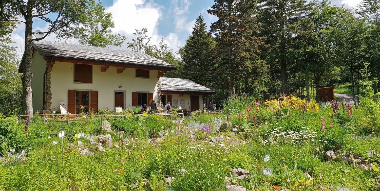 Informazioni per visitare il giardino Botanico Esperia