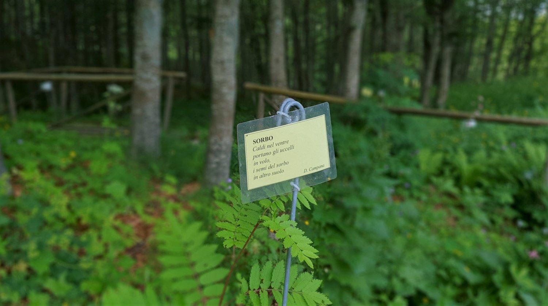 Poesia Giardino Botanico Esperia