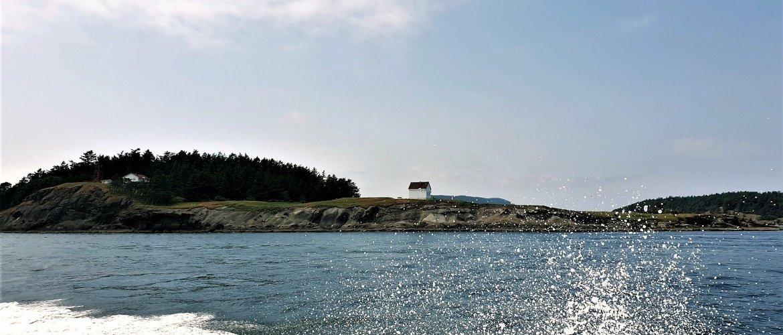 Fare Whale Watching British Columbia Canada