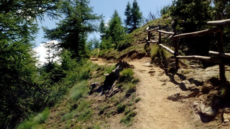 Il percorso del sentiero Natura a Cogne