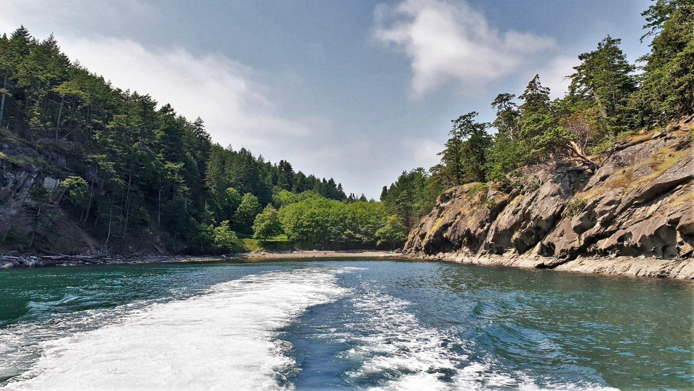 Consigli per fare Whale Watching in Canada