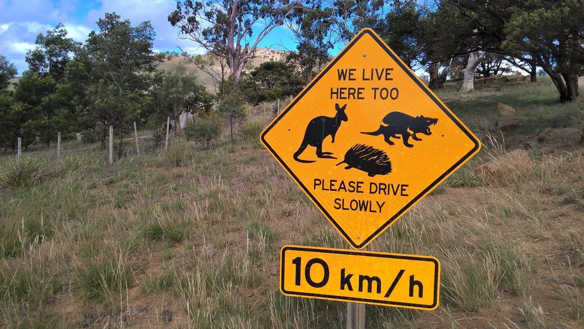 Fare un viaggio in Australia