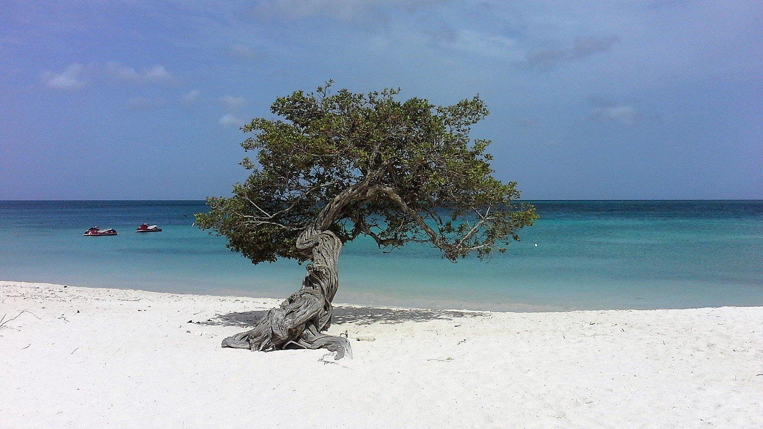Visitare Aruba per le sue spiagge