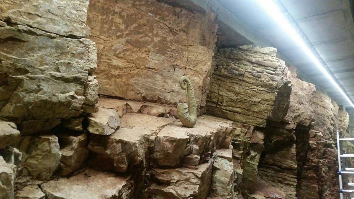 Le grotte sotto il MarSEC