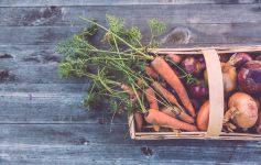 Whynok e la verdura imperfetta