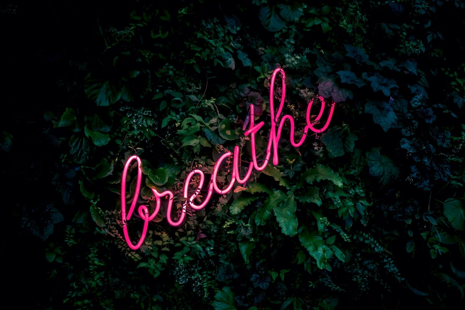 Let's just breathe
