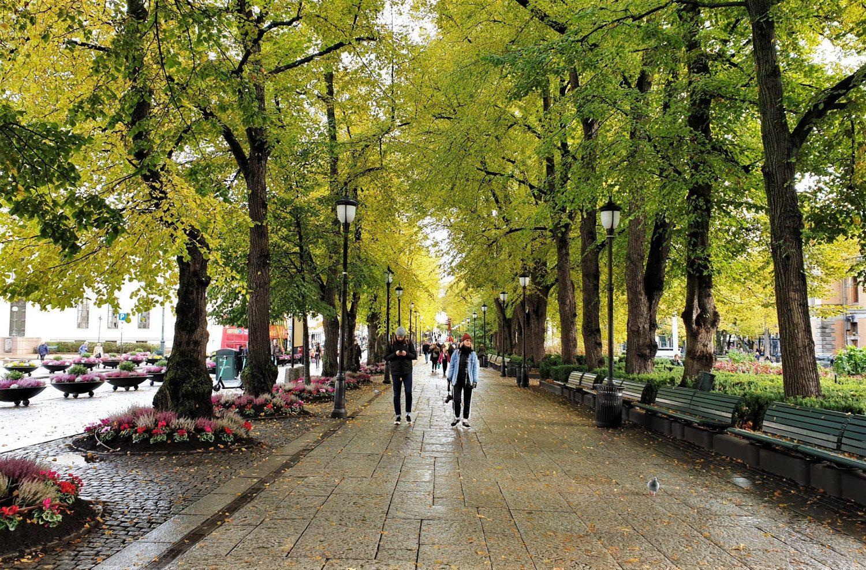 Le vie del centro di Oslo