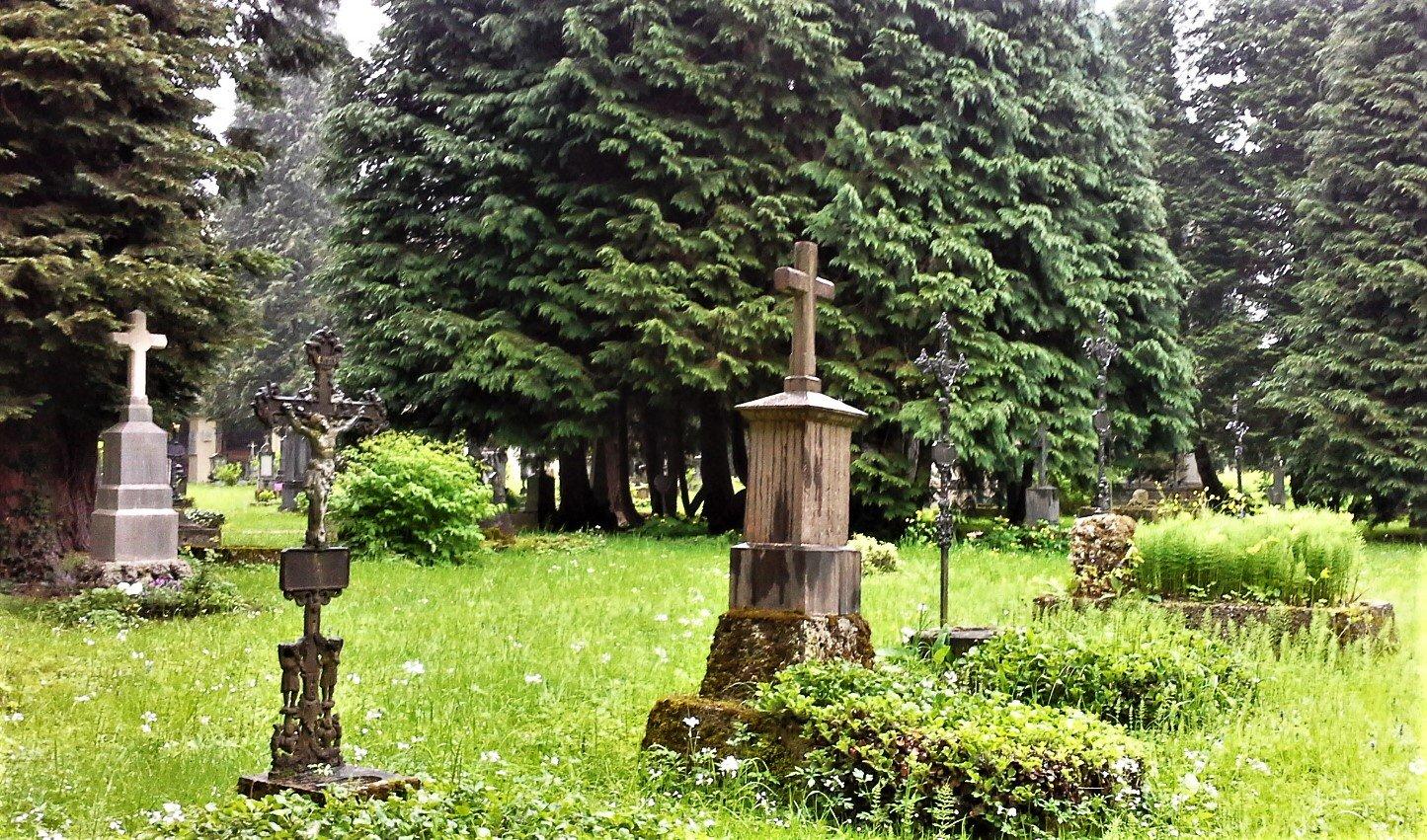 Cimitero Paracelso