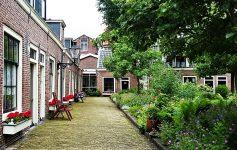 Cosa fare in Olanda Visitare gli Hofjies