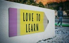 Ho imparato che