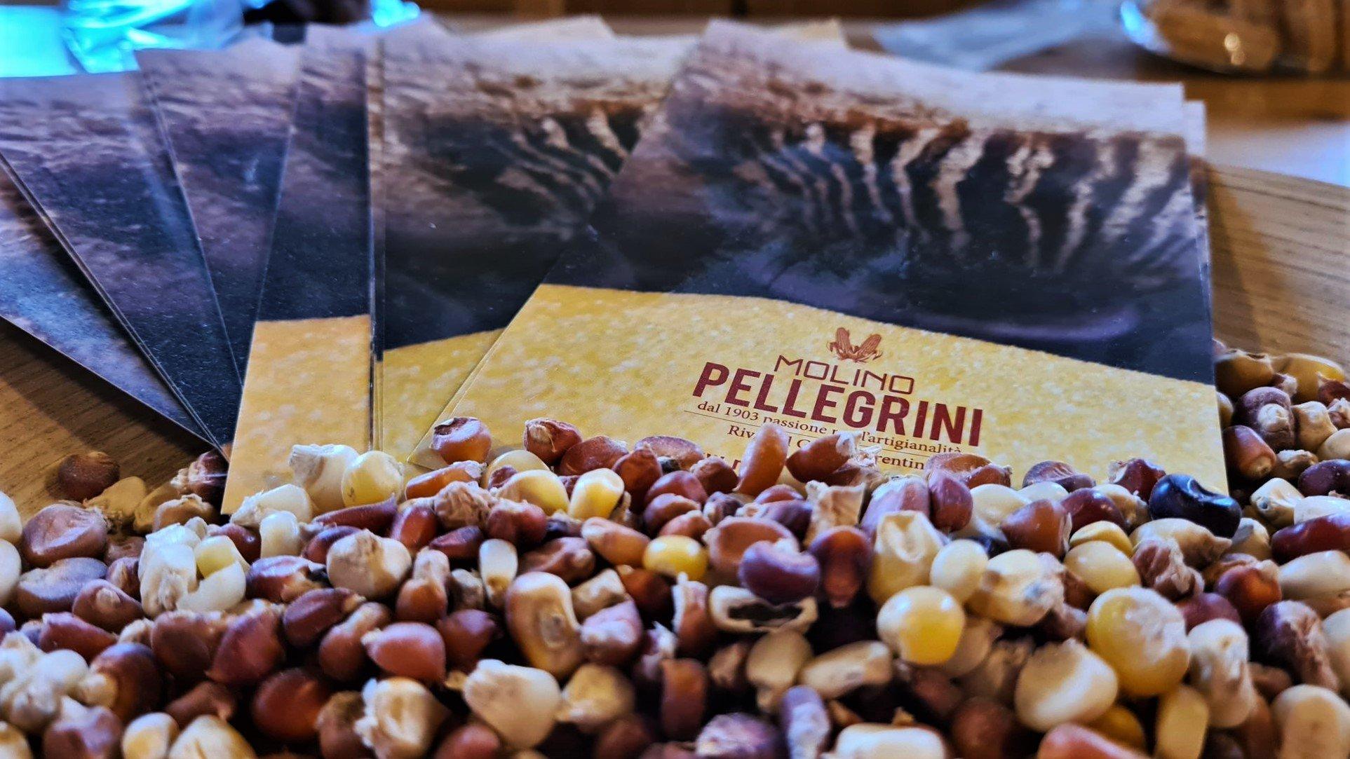 Trentino Visitare Molino Pellegrini a Riva del Garda