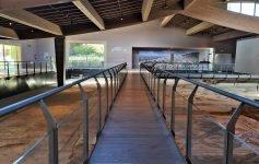 Cosa fare in Umbria visitare la Villa Romana di Spello