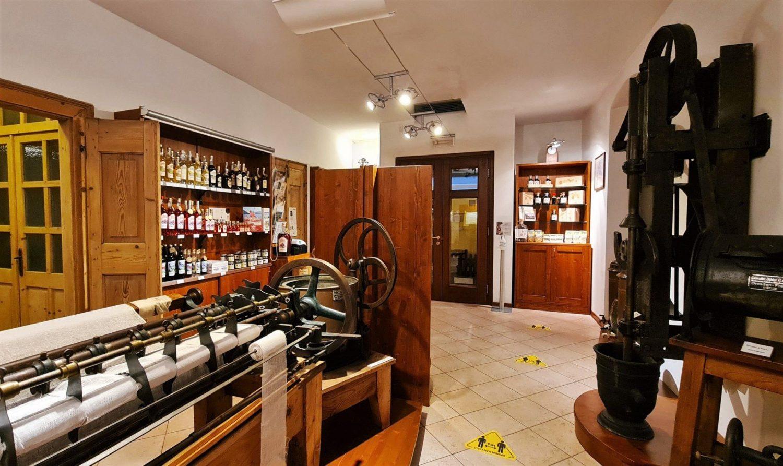 organizzare la visita al Museo Foletto