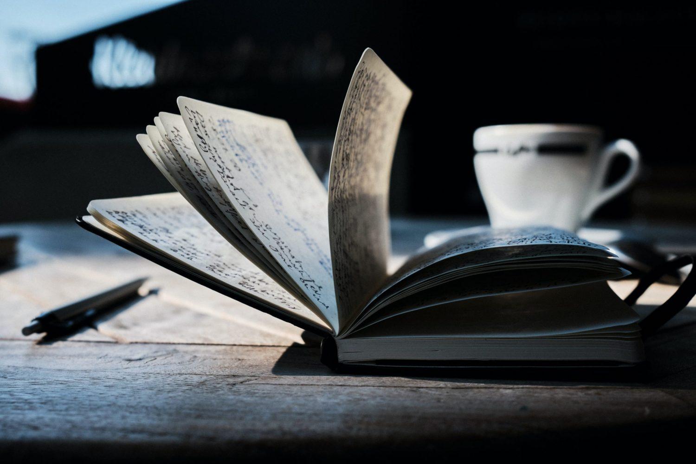 I diari della Giovy