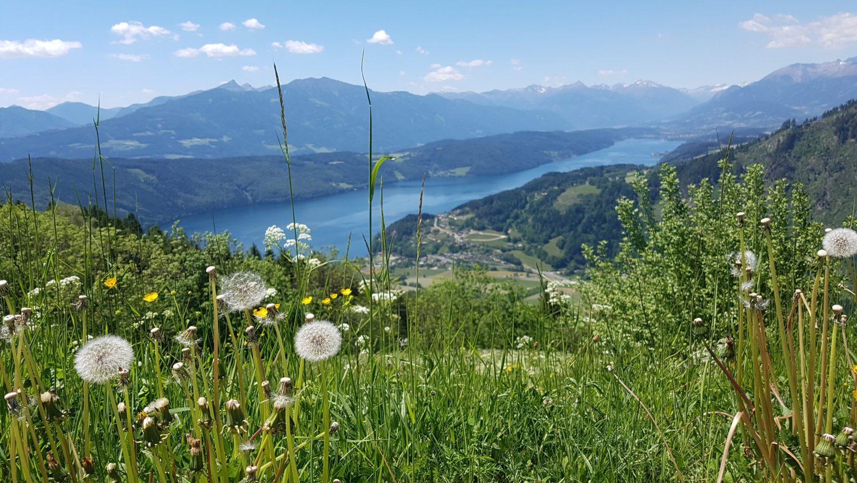 Quello che amo dell'Austria