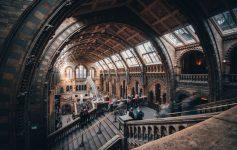 6 musei che vorrei rivedere