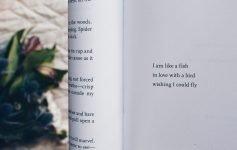 I luoghi dei miei poeti preferiti
