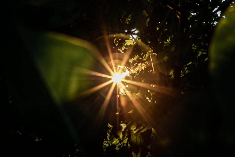 cosa ci riempie di luce