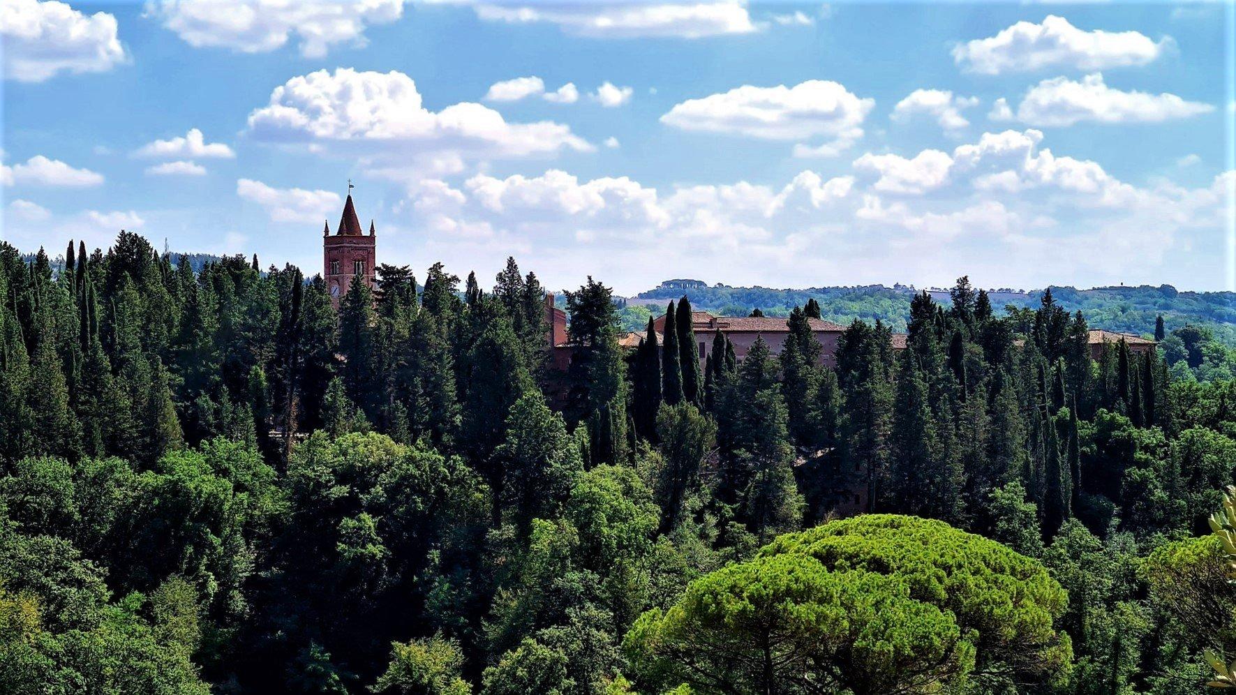 Cosa fare in Toscana Visitare l'Abbazia di Monte Oliveto
